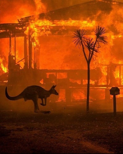 AUSTRALIA FIRES - HOW YOU CAN HELP