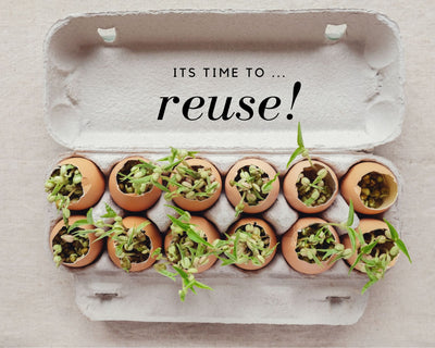 THE REUSE REVOLUTION-A LOOK INTO OUR FUTURE