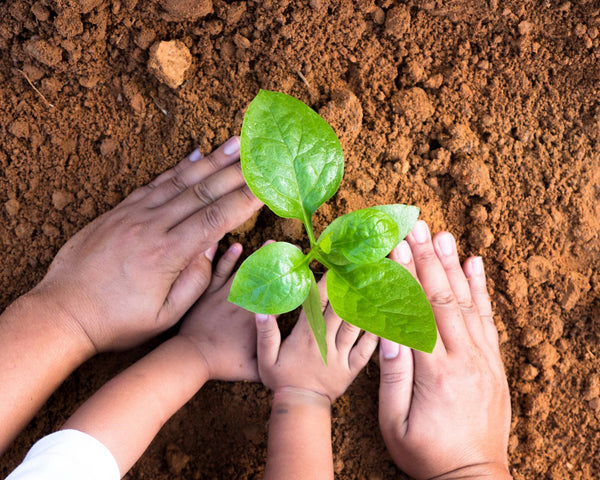 5 STEPS TO RAISING EARTH CONSCIOUS CHILDREN