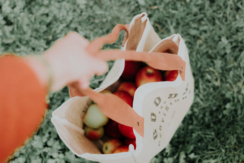 A person holding a reusable bag full of apples.