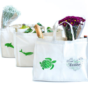 Cotton Grocery Bags for Shopping with Organizing Pockets, Set of 3 - Reusable