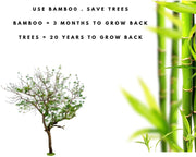 photo showing the key features of bamboo including they take 3 months to grow back and it helps you save trees