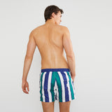 Paradise Stripe Swim Shorts