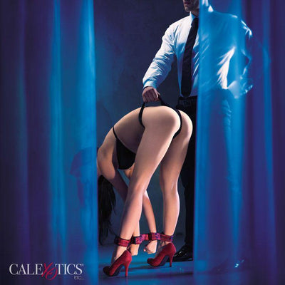 CalExotics Scandal Bondage Bar