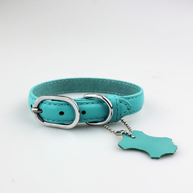 Leather Dog Collar, Various Colors