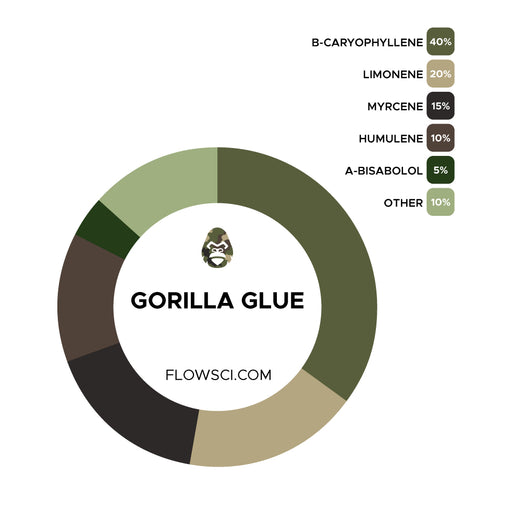 Gorilla Glue Terpene Strain Profiles Flow Sci