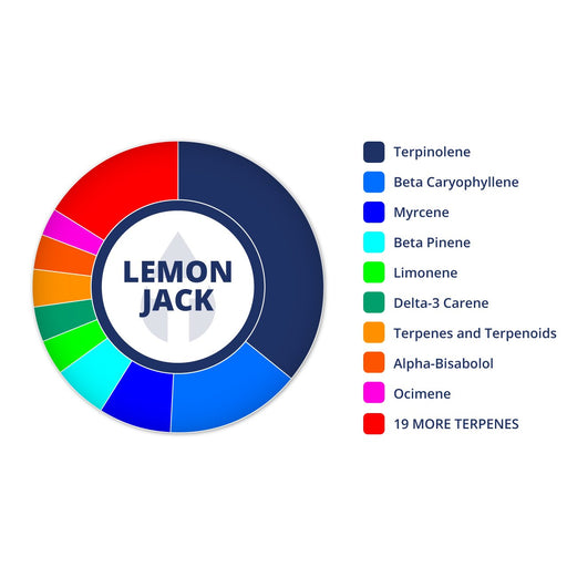 Lemon Jack Terpenes Strain Profiles
