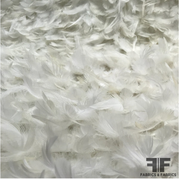 Novelty Feathers - White