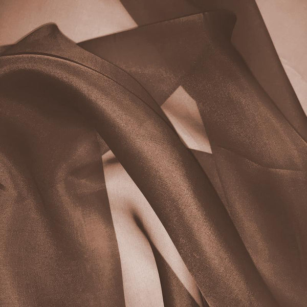 Brown Silk Organza fabric - Fabrics & Fabrics