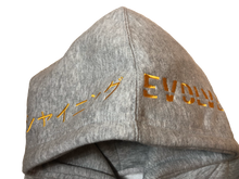 COLLAB: SHINING EVOLVE GREY HOODIE