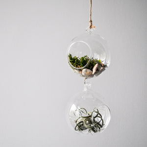 Two-Piece Hanging Glass Terrarium