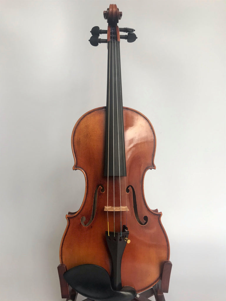 D Z Strad Violin Model 900 Full Size 4/4 Violin (includes Dominant Strings, Bow, Case and Rosin)