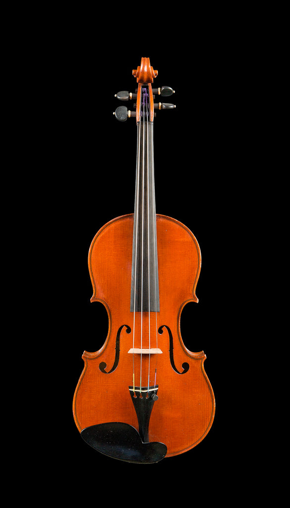D Z Strad Violin Model 800 Full Size 4/4 with Dominant Strings, Bow, Case and Rosin (Full Size - 4/4)