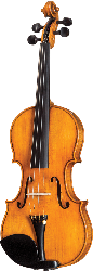 German Höfner HOF-225-TB Full-size Violin