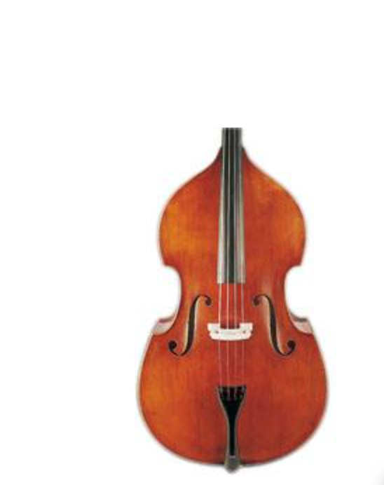 D Z Strad Double Bass - Model 100 (1/2)