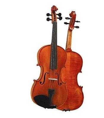 D Z Strad Violin - Model 101 - Carved Top