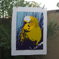 Budgerigar Tea Towel