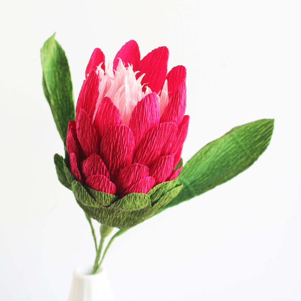 Paper Protea Single Stem