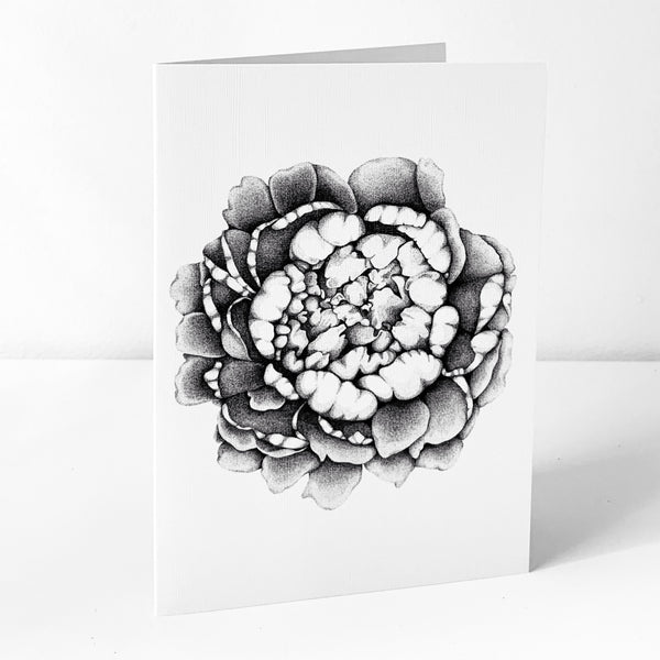 Coral Poppy Art Card