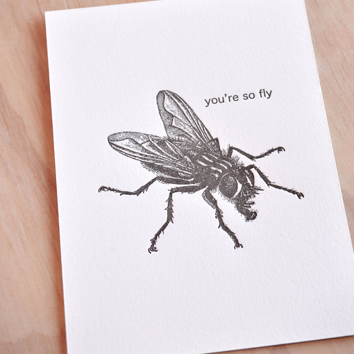 You're So Fly Card