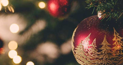 6 Reasons Why We Love Christmas (And You Should Too)!