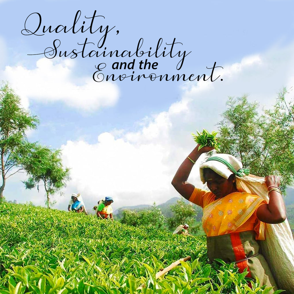Quality, Sustainability and the Environment.