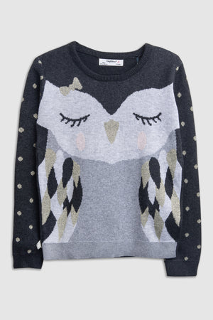Owl Design Sweater