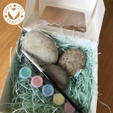 Pebble Painting Kit from Dixie Dot Crafts