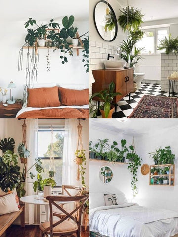 4 picture collage of house plants in the bathroom, bedroom and kitchen of living spaces – including Monstera Deliciosa plants, hanging plants, succulents, Chrysalidocarpus plants and other big, leafy greenery. Interior design blog about how to turn your home into a luscious urban jungle by bringing in house plants and greenery. Written by vintage-etc in Cape Town. We make custom made & bespoke tables, benches, free-standing kitchen islands, desks, media units & wardrobes in our Cape Town & Johannesburg workshops – using Oak, Oregon, Ash, Beech, Birch Ply & Meranti. We also sell imported furniture, provide design consulting services & make soft furnishings e.g. sofas & upholstered chairs in linen, velvet & stain resistant fabric.
