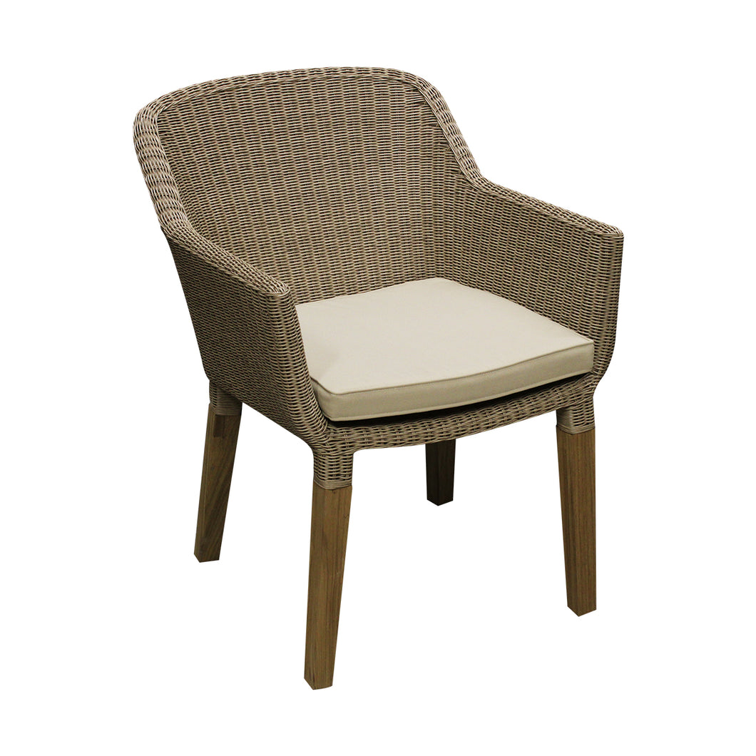 Alter dining chair & cushion front