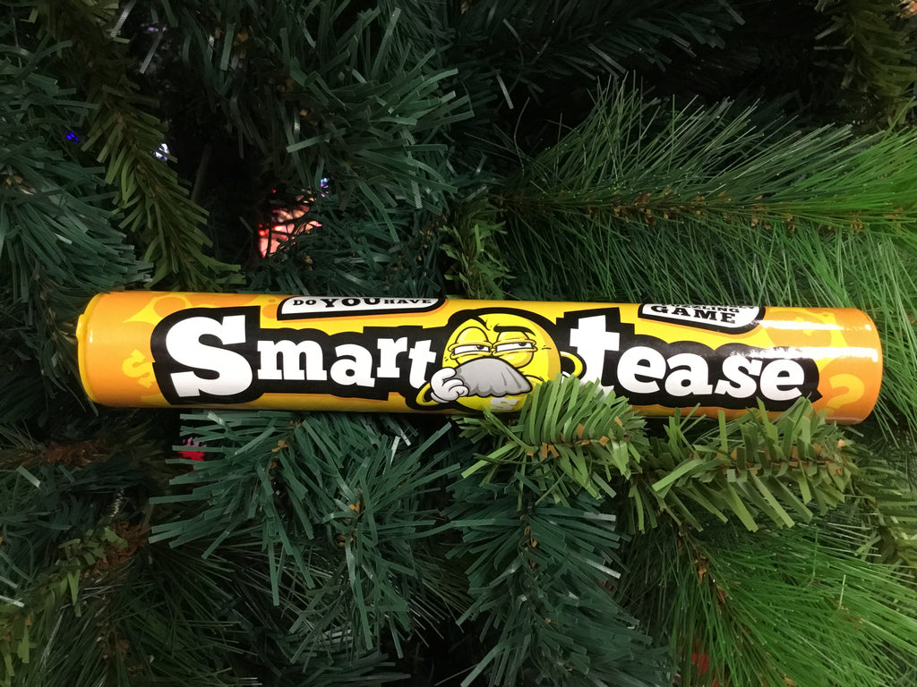 Novelty Kids Smart Tease Puzzle