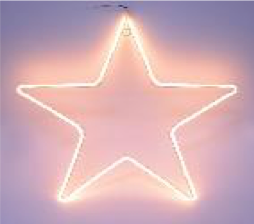 Christmas LED Neon Star Double Sided