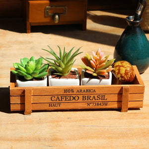 Classic Retro Wooden Container Box for stunning plants display - Garden Gift Hub