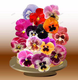 Personality Plus Pansies Flower Cake Topper - Garden Gift Hub