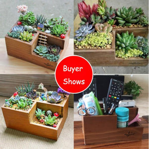 Interesting Wooden Plant Container. For Unusual House, Yard or Fairy Garden Display - Garden Gift Hub
