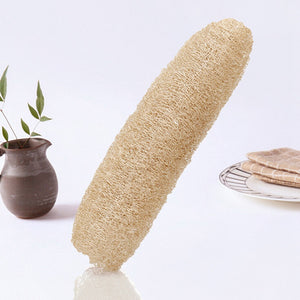 Natural Loofahs grow on trees! Loofah Sponges Are Bliss For Bath, Shower, Body Washing, Sponge, Scrubber and Spa - Garden Gift Hub