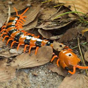 Large Creepy Crawly Centipede Insect with Remote Electric Control Simulation - Garden Gift Hub