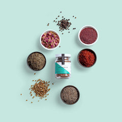 Ottoman | Turkish Spice Blend - Sprinkle Artisan Spice Blends