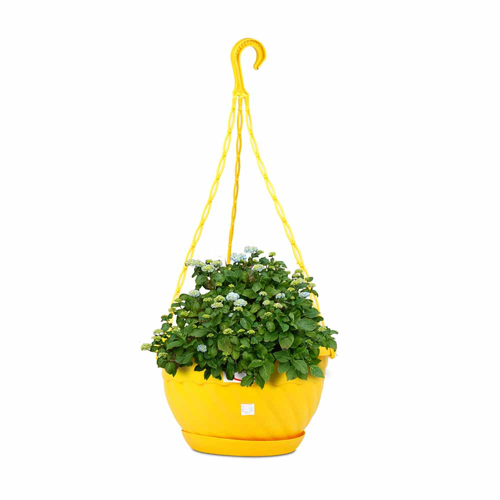 Pepper agro hanging flower pots 8 inch planter with plant saucer blue pots and planterspotpotsplantersplantergarden plantersplant mightylinksfo