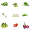 Pepper Agro Vegetable Seed Kit 8 variety with Free Germination Root Plug - Pepper Agro