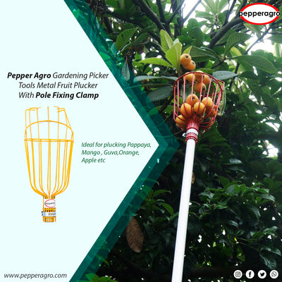 Metal Fruit Plucker | Gardening Picker tools with pole fixing clamp