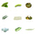 Pepper Agro Vegetable Seed Gourd 8 Variety with Free Germination Root Plug