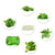 Pepper Agro Leafy Vegetable Seed 6 Variety greens with Free Germination Root Plug