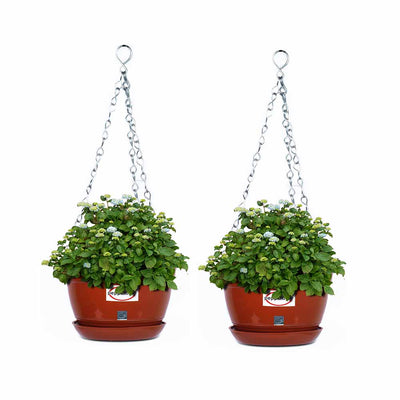 hanging planters,hanging pots,hanging flower pots,hanging pots for balcony,hanging pots for plants,wall hanging pots,wall hanging planter,wall garden pots,garden pots and planters