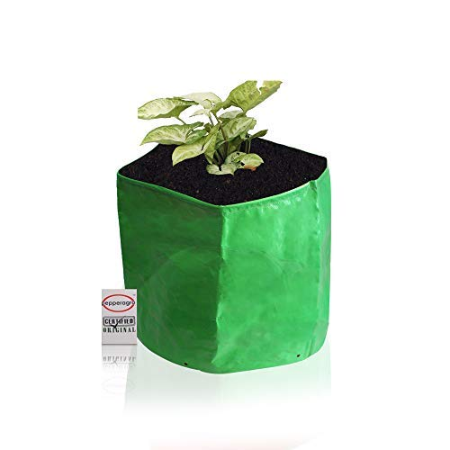 Pepper Agro Evergreen Grow Bags for Terrace Garden Poly Bag Vegetables Planter 15x9(cm)