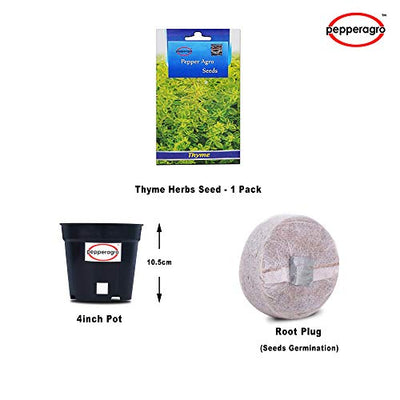 Buy Thyme Herbs Seed 1 Pack Comes With Free Pot & Root Plug | Buy Online