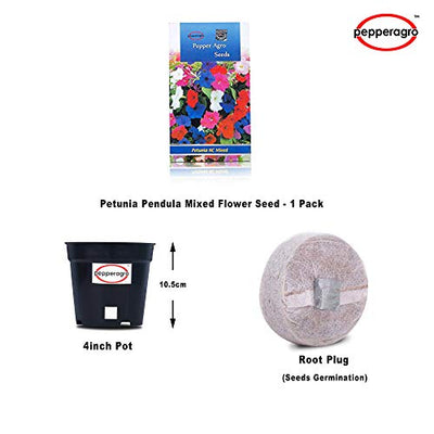 Petunia Pendula Mixed Flower Seed 1 Pack Comes With Free Pot & Root Plug Combo
