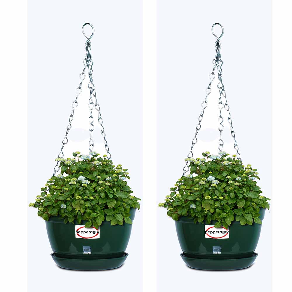 Pepper agro hanging flower planter with metal chain and base plate 8in hanging plantershanging potshanging flower potshanging pots for balcony hanging workwithnaturefo