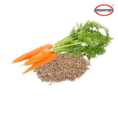 Combo Pack Of Carrot Seeds / Root Plug / 4Inch Pot Combo