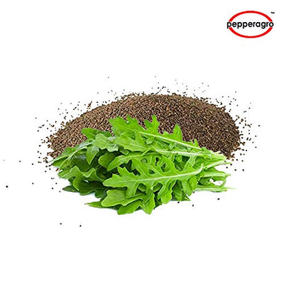 Combo Pack Of Rocket Seeds / Root Plug / 4Inch Pot | Buy Online